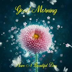 Good Morning Wishes Gif, Good Morning Beautiful Flowers, Good Morning Images Flowers, Good Morning Image Quotes, Good Morning Roses, Good Morning Beautiful Quotes, Good Morning Cards, Good Morning Photos, Good Morning Greetings