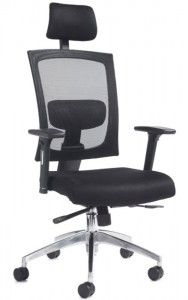 Posture Chair Desk Lower Back Support 35 Best Chairs Images Barber Office Gemini 200 Fabric Mesh Task Operator Medium Orthopaedic