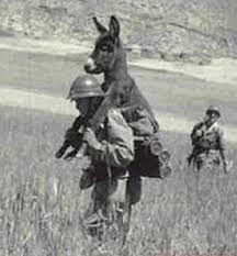 Soldier and donkey.