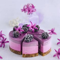 Vegan, raw, gluten-free pitaya and black goji berry cheesecake. Berry Cheesecake, Vegan Cheesecake, Vegan Cake, Cheesecake Recipes, Goji Berry Recipes, Raw Food Recipes, Dessert Recipes, Food Tips, Rainbow Smoothies