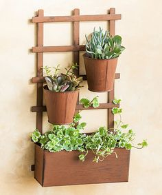 Love this Rustic Lattice Wall Planter on #zulily! #zulilyfinds