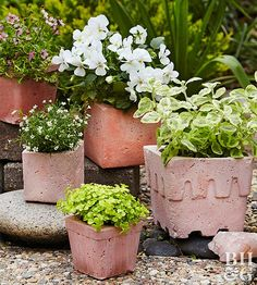 Skip the store and create customized planters at home thanks to these easy step-by-step instructions.