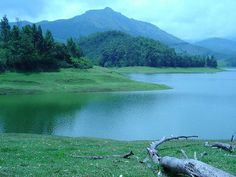 Kodaikanal is one of the most beautiful places in India. With it's steep mountains, rocks, dense forests and lovely lakes, it is truly one of the most beautiful places on earth.