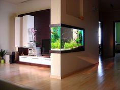 simonsaquascapeblog:  Aquascaping and interior design Great combination!