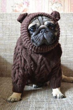 вязаный свитер для собаки - Поиск в Google