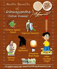 Prev post1 of 3Next One herb that has been increasingly getting attention in the world of medicine is ashwagandha, also called Indian ginseng or Withania somnifera. This herb has been used for years in the ancient Indian system of medicine, Ayurveda, as well as Chinese medicine. Ashwagandha has a wide range of health benefits. It