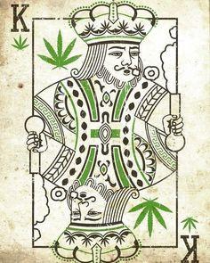 ________ #cannabisarmy #cannabisculture #cannabiscup #cannabissociety #cannabisdestiny #cannabiscures #cannabiscommunity #stonernation #prettypotheads #stonergirls #bongbeauties #stonerfam #stonerlife #potheadsociety #highsociety #stayhigh #staylit #weshouldsmoke #fueledbythc #medicated #420australia #canadianstoners #topshelflife #prettypothead #highlife #420life #420culture #iwillmarrymary #hightimes