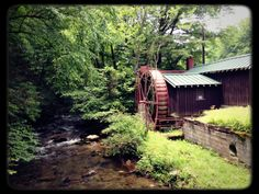 Curtis Creek, North Carolina