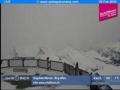 Foto Bollettino Neve Schilthorn: http://www.bollettinoneve.net/bollettino-neve-schilthorn.html Bollettino neve Oberland Bernese #neve #montagna #snowboard #snow #mountain #sciare #inverno #ski #skislope #skier #skiing #winter #alpi #alps #appennini