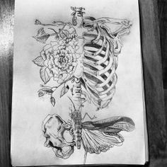 rose ribcage and butterfly hips