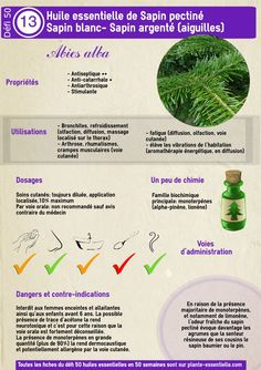 Huile essentielle Menthe poivrée: propriétés et utilisation - здоровье - Yorgo Angelopoulos Health And Wellbeing, Health And Nutrition, Essential Oils Guide, Diy Lotion, Homemade Cosmetics, Homemade Beauty Products, Medicinal Herbs, Natural Healing, Doterra