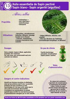 L'huile essentielle de sapin pectiné : propriétés et utilisation sans danger (Abies alba)