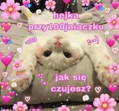 Cute Sentences, Cute Imagines, Sweet Memes, Couple Memes, Self Deprecating Humor, Cute Messages, Sweet Pic, Cute Cats And Dogs, Wholesome Memes