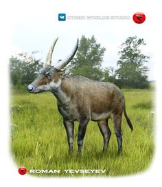 Other worlds studio Prehistoric World, Prehistoric Animals, J Park, Monster Hunter, Fauna, Safari Animals, Wildlife Art, Mammals, Roman