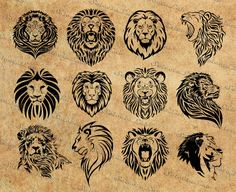 Digital image lion clipart, africa, silhouette, vector, instant download Leo Lion Tattoos, Tribal Lion Tattoo, Small Lion Tattoo, Small Tattoos, Lion Clipart, Lion Vector, Silhouette Tattoos, Silhouette Vector, Traditional Lion Tattoo