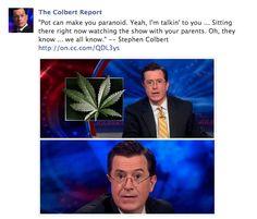 Steven Colbert paranoid stoner