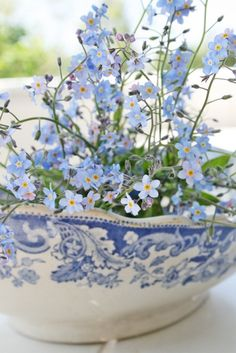 Forget-me-nots in the wedding bouquet. Something blue Blue And White China, Love Blue, Blue China, China China, Vibeke Design, Deco Floral, Beltane, Something Blue, White Decor
