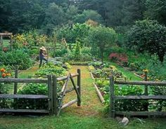 vegetable garden design with wooden fence