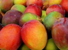 frutas brasileiras - Mangas