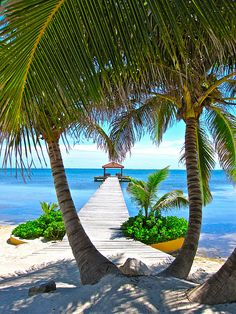 Oh, wow - Belize