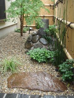 Small Japanese Garden Transforms This Backyard - Watch