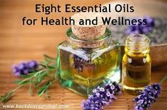 Natural Health News and Wellness Tips | Natural Remedies and Products: Eight Essential Oils for Health and Wellness