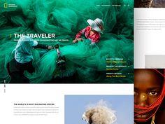 National Geographic Splash Page by Andrew Baygulov
