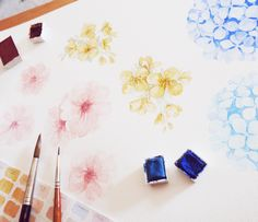 Cherry blossom season in Korea: Jeju Island Spring Flowers Illustration Canola flowers, cherry blossoms, and hydrangea in watercolor.