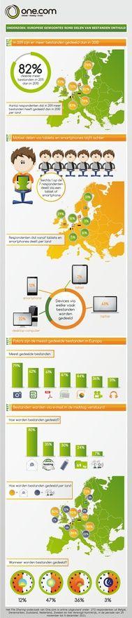 Webhosting, hosting, domains - infographic (in Dutch) web-hosting-i-love