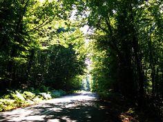 On the road/Arnaia-Olympiada (Halkidiki)