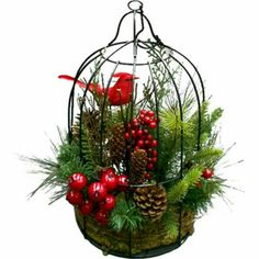 Simple decorative bird cage for Christmas Christmas Planters, Christmas Bird, Rustic Christmas, Christmas Home, Christmas Projects, Christmas Holidays, Christmas Wreaths, Christmas Ornaments, Xmas Crafts