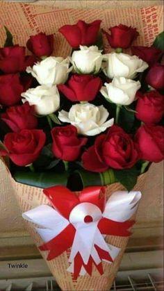 Asmafor u wafa Beautiful Rose Flowers, Flowers Gif, Beautiful Flowers Wallpapers, My Flower, Pretty Flowers, Happy Birthday Flower, Red Rose Bouquet, Good Morning Flowers, Luxury Flowers