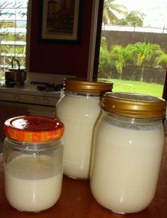 Borneo Wife: How to Make Yogurt From Scratch--So Easy!