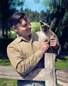 Here is a photo of Clark Gable (1945) with one of his Siamese cats that was colorized by an artist by the name of Jecinci. Jecinci has a page on FB.