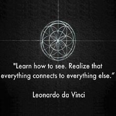 Learn how to see. Realize that everything connects to everything else. ~Leonardo da Vinci