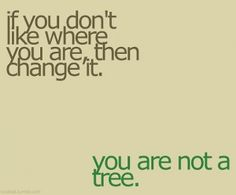 I am not a tree...And I did change where I am.  I am so excited!