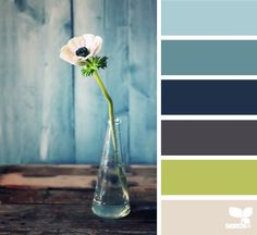 Back porch colors!