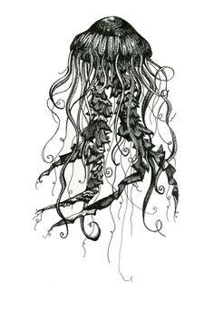 jellyfish print | Art Prints Framed Art Prints Stretched Canvases