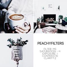 "Peachy Filters Filter name: mist #peachyfilters #vsco #vscofilters #vscocam"""