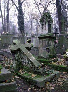 """Jimmy Boyd Slechts 18 jaar is geworden Veel te vroeg is hij ons ontnomen Geliefde zoon en trouwe vriend Onze liefde voor jou zal blijven bestaan ( Dit las Rachel op Jimmy's graf in haar """"denkbeeldige leven"""")"""