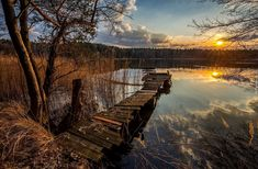 Jezioro, Zachód Słońca, Pomost, Szuwary, Drzewa