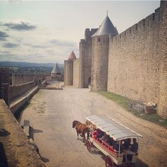 #carcassonne #medival #picoftheday #photooftheday #lifestyle #beautiful #pretty #europe #eurotrip #france #bestoftheday #goodtimes #travel #traveler #backpacking #igers #igdaily #instago #instagood #instalife #instatravel #instapic #igtravel #renaissance #horse #castle by jeneahfawcett