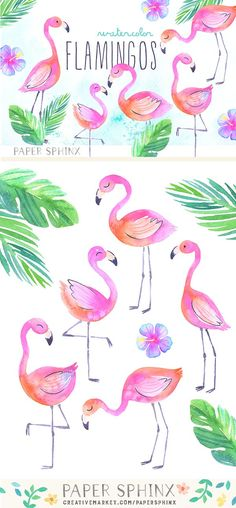 Watercolor Tropical Flamingo Clipart by PaperSphinx on @creativemarket