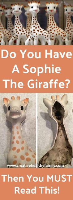 Your cute little chewing baby toy can be full of mold. Yikes! You Must Read This If You Have A Sophie The Giraffe At Home. #mold #safety #baby #moms #motherhood #babyproducts #chewtoy