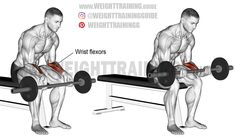 So you want to build big and powerful chest muscles? Huge big pectoral muscles (pecs) or chest muscles that command respect and adoration? Barbell Hip Thrust, Compound Exercises, Arm Exercises, Training Exercises, Weight Training Programs, Chest Muscles, Workout Guide, Fat Workout, Biceps Workout