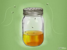 How to Get Rid of Gnats. Use ammonia to kill gnats in drains, or make a gnat trap with apple cider vinegar and a mason jar. Get rid of the gnats' food supply an Homemade Gnat Trap, Gnat Traps, How To Get Rid Of Gnats, Stink Bugs, Fruit Flies, Bed Bugs, Pest Control, Cleaning Hacks, Insects