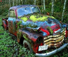 14.) An abandoned Chevrolet truck, abandoned in the middle of a forest.