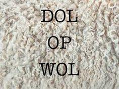 Afbeeldingsresultaat voor wol