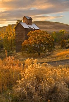 Gorgeous old barn blends into the landscape Country Barns, Old Barns, Country Life, Country Living, Country Roads, Country Fall, Cenas Do Interior, Country Scenes, Foto Art