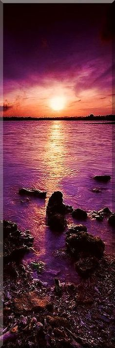 amazing SUNSET scenery #by ojat #landscape seascape sky purple orange yellow sea lake stone beach nature